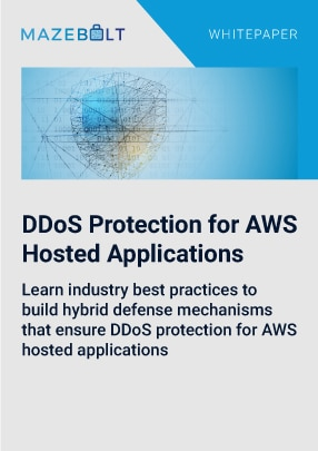 ddos for enterprise infrastructure